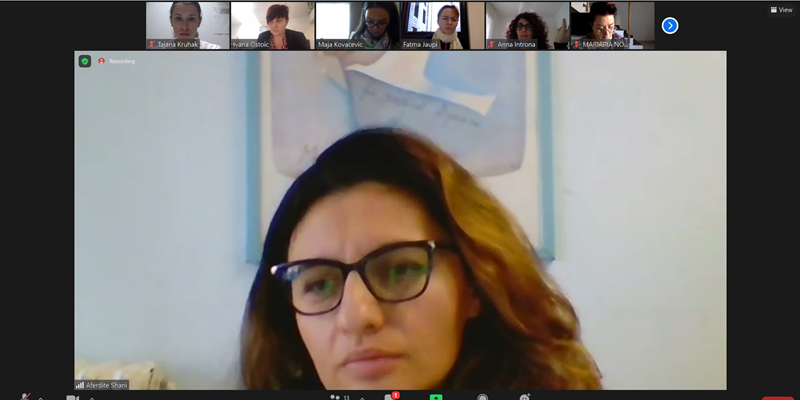Screenshot from the DUE MARI online meeting