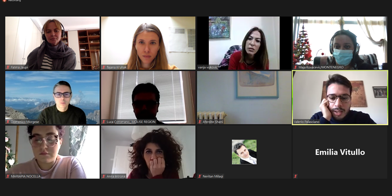 Screenshot from the project meeting