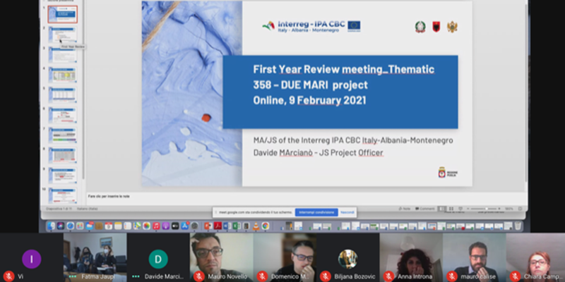 Screenshot of the first-year review meeting